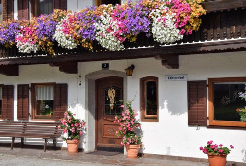 G Blumen_2017_GrattKristern_4