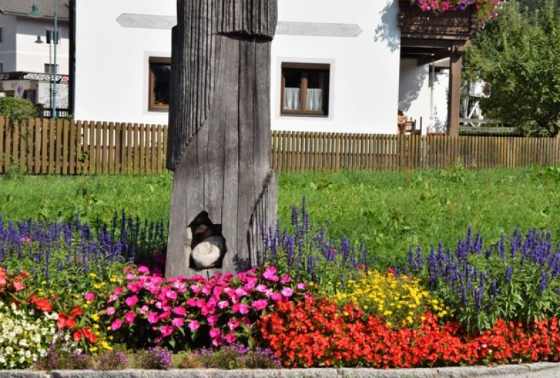 G Blumen_2017_SchoenauInseln (6)